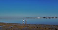 Reflexos (Helena Compadre) Tags: blue sky portugal water gua azul skyline paisagem cu algarve reflexos riaformosa horizonte olho parquenaturaldariaformosa ilhadaarmona aoarlivre helenacompadre canonpowershotsx510hs