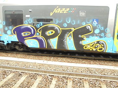 005 (en-ri) Tags: rpie reptiles gelos gelo crew blu giallo nero train torino graffiti writing