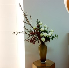 White roses. (Ligia Miranda) Tags: roses white ikebana rosas aroeira jatob nagueire