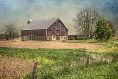 Summer Farm (John Ronson Photography) Tags: ontario farm silo textures summerfarm brendaclarke jaijohnson ontariofarm shadowhousecreations