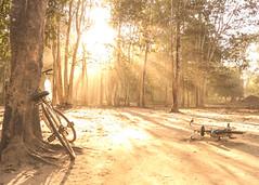 Kampong Thom-9 (Lukas P Schmidt) Tags: kambodscha kampongthom