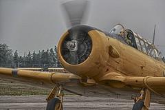 Harvard (gerry303) Tags: airplane aircraft vehicle outdoor harvard vintage airshow brantford ontario flickrunitedaward