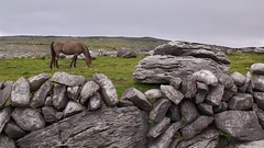 Drystone (Michael Foley Photography) Tags: ireland burren coclare galwaybay