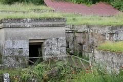 Necropoli di Orvieto_24