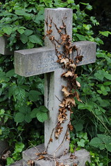 Brompton Cemetery, London, UK (littledutchboy) Tags: uk london