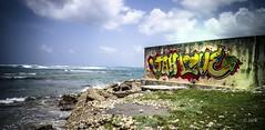 Jah Love (Jack_from_Paris) Tags: l1005200 leica m type 240 10770 leicaelmaritm28mmf28asph 11606 dng mode lightroom capture nx2 lr colors couleurs guadeloupe gwada street art yellow jaune mur moule mer sea reggae antilles franaises