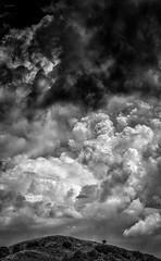 Nessuna_fuga (Danilo Mazzanti) Tags: blackandwhite photography nuvole foto photos fotografia albero biancoenero fotografo danilo composizione nubi mazzanti drammatico danilomazzanti wwwdanilomazzantiit