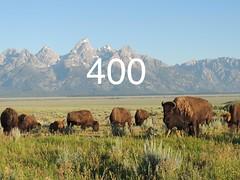 400 Followers (brickdetailer) Tags: morning colorado grand 400 wyoming tetons bison followers
