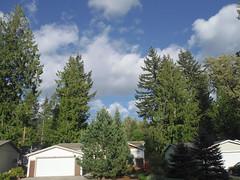 DSCF1528.JPG Partly Cloudy Afternoon (niiicedave) Tags: houses weather clouds oregon afternoon unitedstates pacificnorthwest cascadia partlycloudy cascaderange westernredcedar clackamascounty hemlocktrees cascadesmountainrange welchestown
