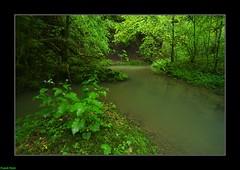 Ruisseau de Château Renaud - Crouzet Migette (francky25) Tags: ruisseau de château renaud crouzet migette franchecomté doubs