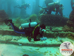 Scuba Diving-Miami, FL-Jun 2016-23 (Squalo Divers) Tags: usa divers florida miami scuba diving padi ssi squalo divessi