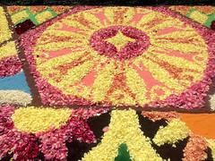 Sapporo Flower Carpet 1 (Sasakei) Tags: japan sapporo hokkaido iphone