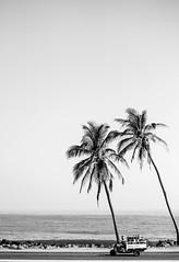 Caribbean style (1jonathan1) Tags: road street morning light sea two sky blackandwhite costa sun seascape man tree love nature water bike skyline photography mar agua colombia ride walk style wave palm caribbean ola cartagenadeindias
