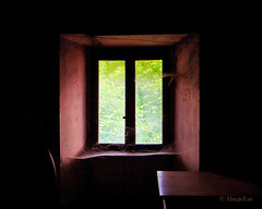 The Window Lighting ... (MargoLuc) Tags: italy house green window leaves dark table spring ancient moody days rainy feeling lagodicomo