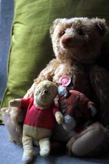 3 Bears (Benn Gunn Baker) Tags: bear childhood canon bristol baker teddy bears pooh memory comfort benn gunn steiff 550d t2i
