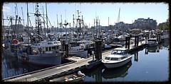 Fisherman's Wharf Victoria BC (wjis21) Tags: hmcs hmcsmalahat shoalpoint innerharbour fishermanswharf fishemans jamesbay bay ocean water harbour boats sail whales huron gopro galaxynote5