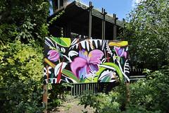 street art, Festival of Brasil, Horniman Museum (duncan) Tags: brazil streetart brasil graffiti horniman hornimanmuseum milotchais festivalofbrasil