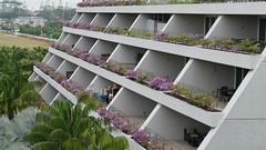 Marina Bay Sands (sth475) Tags: city hotel singapore tourist tropical attraction singapura marinabaysands
