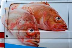 England 2016  Windsor  Fishes (Michiel2005) Tags: uk greatbritain england fish bus unitedkingdom britain windsor van berkshire vis engeland vk grootbrittanni verenigdkoninkrijk