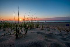 Blade of Grass (Isaac Guerrero) Tags: oceancity maryland 126street sunrise beach