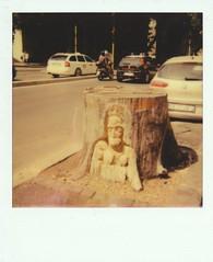 Dead Trunk (+faster+) Tags: italy roma up polaroid italia close andrea carve trunk albero tronco pola impossible gandini 2016 impossibleproject andreagandini alberiromaitaly