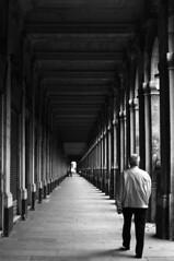 (www.tokil.it) Tags: paris france citt city ville centro center centre uomo man homme camminata walk marcher colonnato colonnade prospettiva perspective galleria galerie gallery biancoenero blackandwhite bw noiretblanc