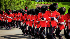 Synchronized March (mikederrico69) Tags: street red canada army march ottawa ceremony hats police parade guns