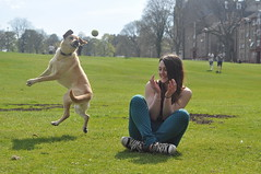 Day 128 (KathrynMcGrane) Tags: travel summer dog sun scotland funny edinburgh ortrait d5000