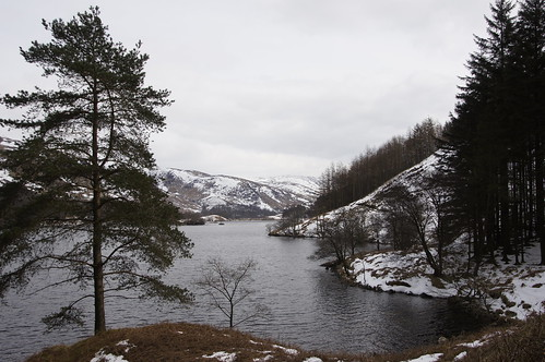 Loch Trool in winter