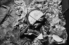 (emmakatka) Tags: house abandoned broken floral mirror paint floor northdakota chipped derelict abandonment