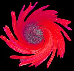 Red twirl flower (Gill Stafford) Tags: red flower twirl gillstafford