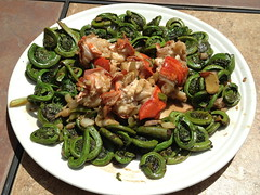 Fiddleheads with Lobster Tail (BobC123) Tags: fern cooking lobster fiddleheads
