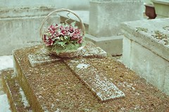 Pre Lachaise (furtivefoxes) Tags: flowers paris france film grave 35mm cross tomb olympus prelachaise olympusomg olympusom20