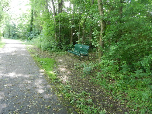 bench along the greenway