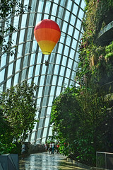 Cloud Forest (chooyutshing) Tags: singapore display cloudforest hotairballoons marinabay gardensbythebay nationalparksboard