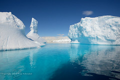 Shades of Blue (pdxsafariguy) Tags: blue reflection ice water bay antarctica remote iceberg ecotourism tomschwabel anversisland fournierbay