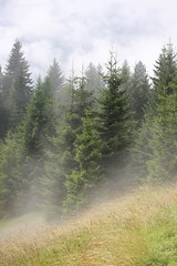 Foggy mountain (claireandre) Tags: mountain austria foggy brouillard tyrol brume autriche