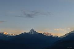 Machapuchhare desde Saranghot (Me llamo Javierl) Tags: himalaya pokhara montaas machapuchhare