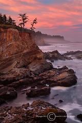 Shore Acres (David M. Cobb) Tags: statepark sea cliff usa oregon sunrise coast seaside or shoreline dramatic cliffs pacificocean coastal shore coastline seashore capearago shoreacresstatepark shoreacres