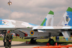 "Sukhoi Su-27 (4) • <a style=""font-size:0.8em;"" href=""http://www.flickr.com/photos/81723459@N04/9962702013/"" target=""_blank"">View on Flickr</a>"