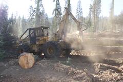 IMG_9749 (RyanP77) Tags: tree pine forest truck john saw log lift harvest logging fork sierra chain deere peterbilt skidder