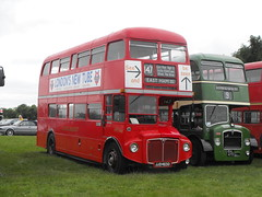 RML 2463, JJD 463D, AEC Routemaster, Park Royal Body, 1966 (t.2013)