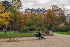 Autumn's Colors -Paris- (Ennio Fratini) Tags: street travel autumn urban paris france fall îledefrance streetphotography olympus viajes francia 2009 ef e510 zd 1260mm