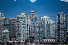 Vancouver 6830 (Orkakorak) Tags: autumn urban fall water vancouver creek front scape false