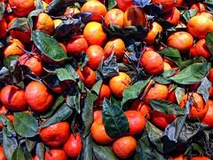 Oranges for Sale (sjrankin) Tags: california food orange leaves northerncalifornia fruit edited branches citrus oranges grocerystore cameronpark cameronparkcalifornia 7december2013