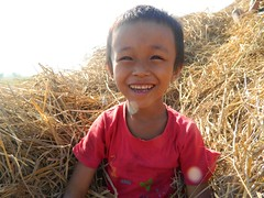 Myanmar rice harvest yields 33 tons to feed 100 orphans, staff for a year; excess to be sold (Peace Gospel) Tags: boy red sun smile sunshine shirt southeastasia rice harvest straw hay