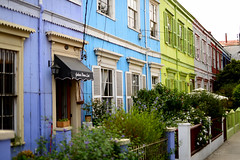 (Ay Fernanda) Tags: chile blue houses summer plants green home colors garden nikon purple valparaso cerroconcepcin d610 colorsoftheworld sigmalens colorphotoaward 50mmf14dghsm nikond610