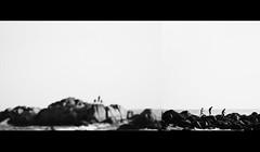 Three (rvgpl) Tags: friends sea blackandwhite beach trek three rocks guys minimal bnw tych