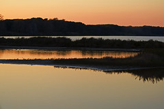 Parco Nazionale del Circeo (Antonio Vaccarini (vanto5)) Tags: travel italien italy canon italia latina italie wetland lazio sabaudia ramsar canonef70300mmf456isusm zonaumida parconazionaledelcirceo canoneos7d antoniovaccarini