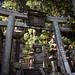 Oku no In Temple and Graveyard at Koyasan